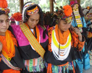 Kalasha Community Ignored in Census Data Collection Form