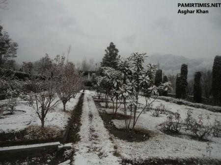 Gilgit Snowfall (6)