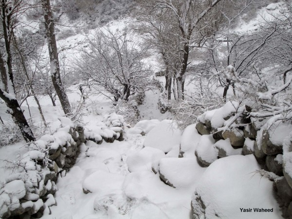 Snowfall in Gulmit Gojal (2)