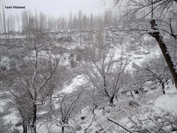 Snowfall in Gulmit Gojal (4)