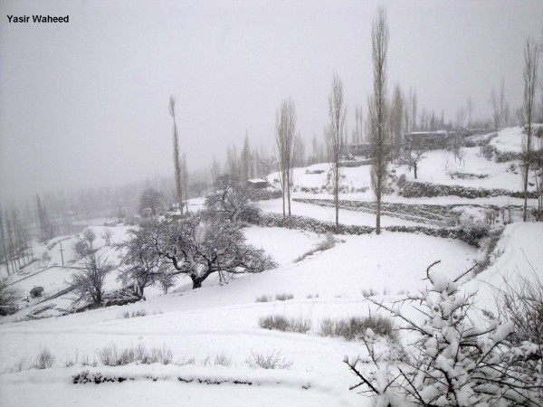 Snowfall in Gulmit Gojal (7)