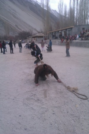 The Tug of War games were traditionally held during the winters. The sports involves physical vigor as well as team work for victory
