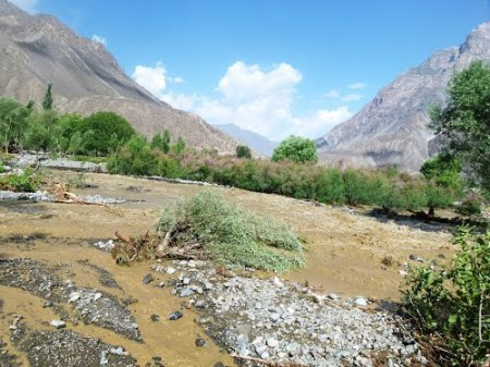 Dalnati was ravaged by floods last year. File Photo
