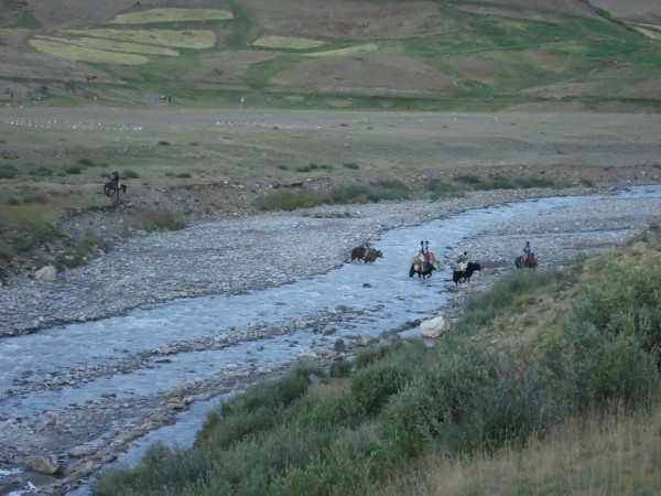 The Broghil festival is full of adventures and surprises, like crossing a stream on yak back!