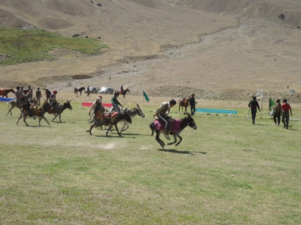 Polo being played on donkeys