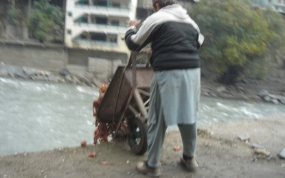 Poultry farmers polluting the Chitral River
