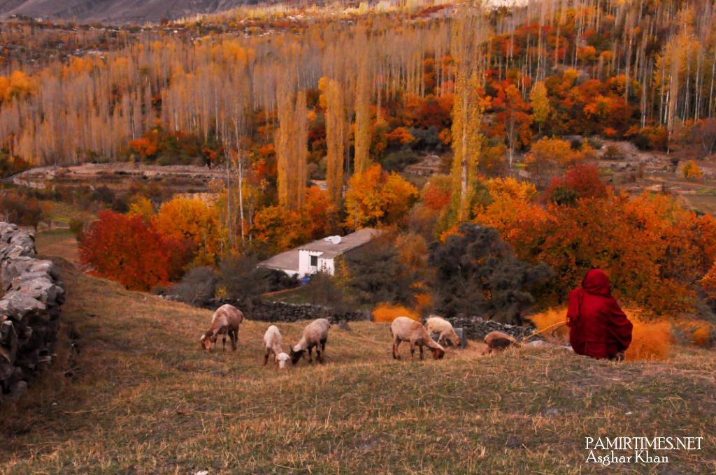 Bieshkar Hunza