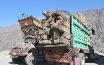 Unidentified people attack forest check post near Sai Jaglote, snatch timber worth millions