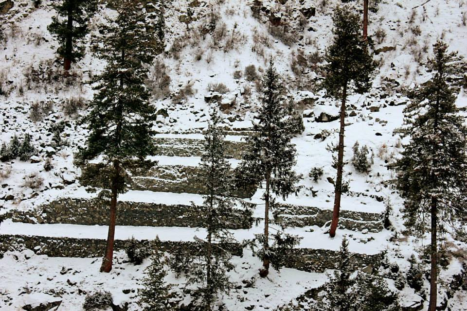Naltar is a scenic valley located in the vicinity of Gilgit city. It is famous as a ski-resort where the Pakistan Air Force organizes national championship events every year