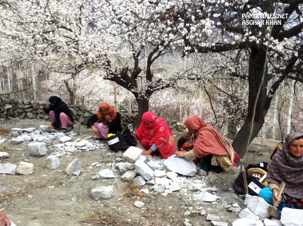 The women in Hunza Valley are playing an increasingly active and visible role in non-traditional arenas of economic activity