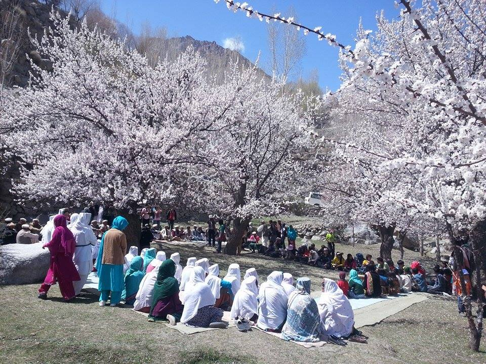 Senior citizens gathered to celebrate the spring festival. Photo: MountainTV.NET