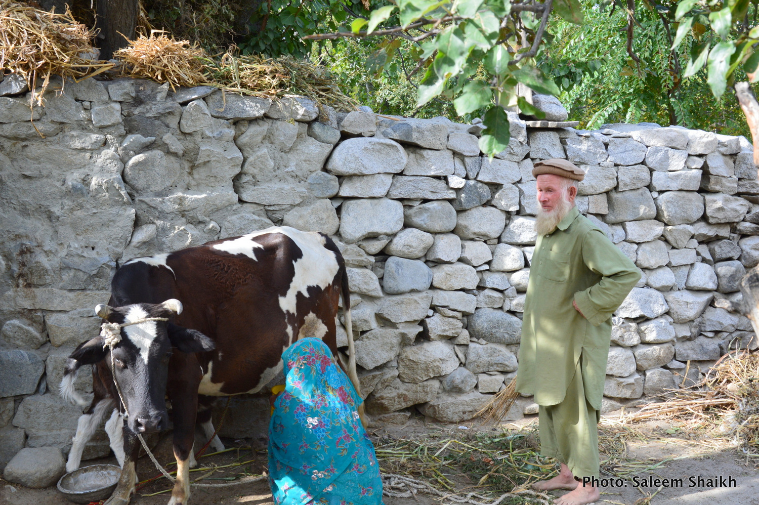 Frequent floods intensify migration, food security in Pakistan's mountainous north