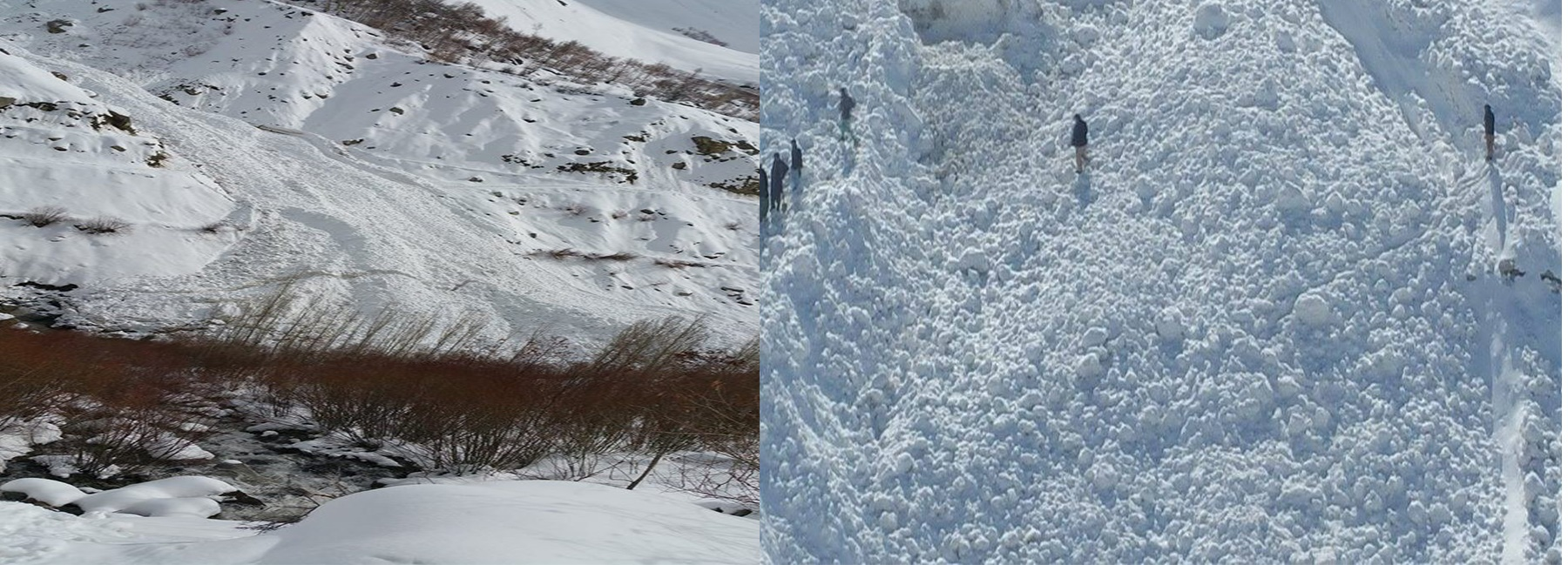 No breakthrough made as search and rescue efforts continue in avalanche hit area of Chitral