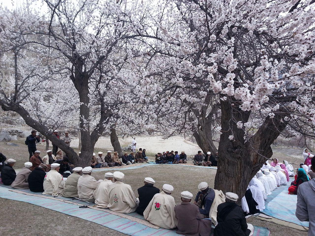 Spring Festival (2)