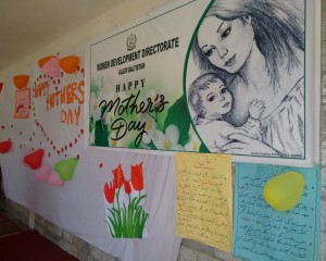 International Mother's Day celebrated in Gilgit