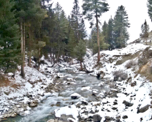 Refreshing and Beautiful Winter Photographs of Naltar Valley