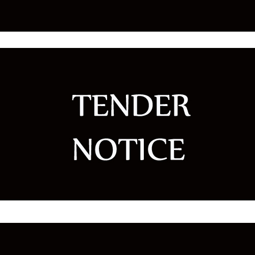 Corruption in Tendering and Awarding of Contracts