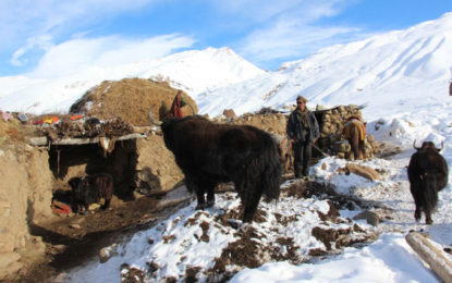 Snow avalanche buries two cousins in Chikar village of remote Broghil Valley, Chitral