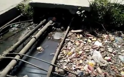 Farmers in Gilgit facing water shortages as the city's historical canals filled with waste