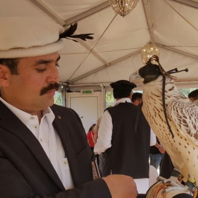 GBians attended 4th International Festival of Falconry in Abu Dhabi