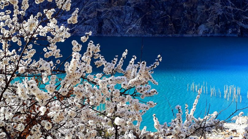 Spring in Gojal valley, Hunza
