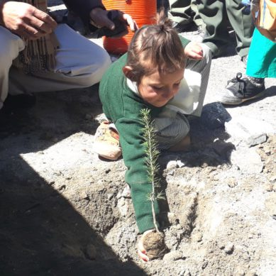 Hunza Serena Inn organizes plantation day at Zuwood Khoon DJ School in Chipursan Valley