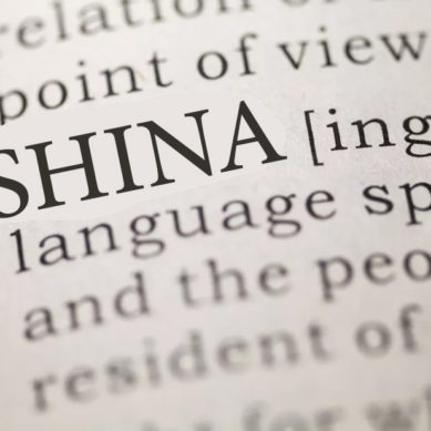 Explicating Shina Terms and Terminologies (II)