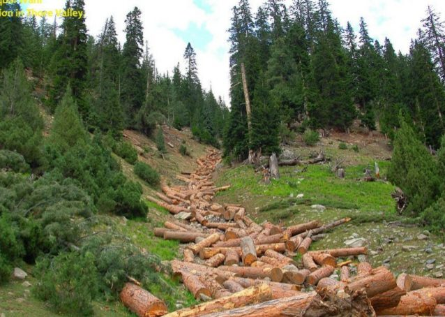 Agro-Foresters of Gilgit-Baltistan – I