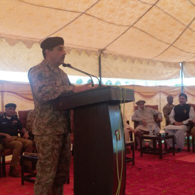 Diamer school attacks negatively affecting CPEC projects: Lt. Gen Raza Nadeem
